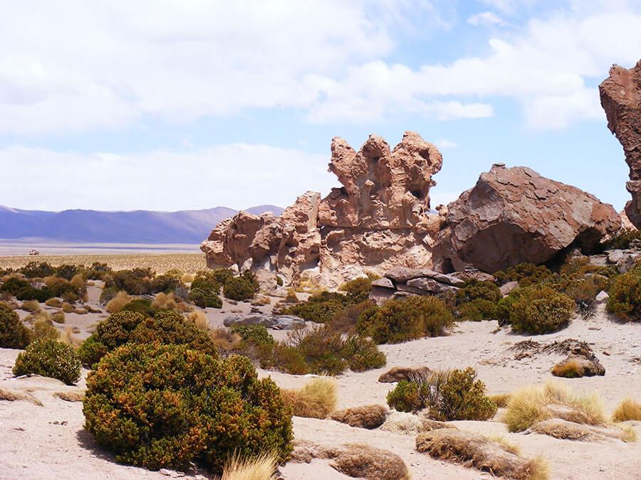 desierto-siloli