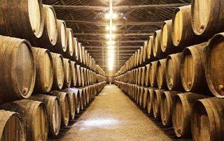 cómo escoger un vino