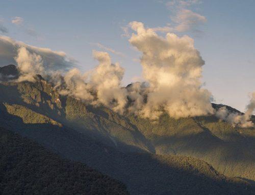 El nuevo parque nacional Río Negro-Sopladora protegerá a 546 especies
