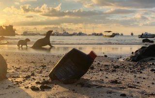 qué pasa en Galápagos