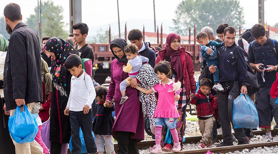 cifras de la migración