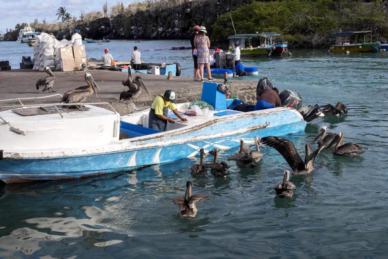 Pescadores artesanales de Galápagos