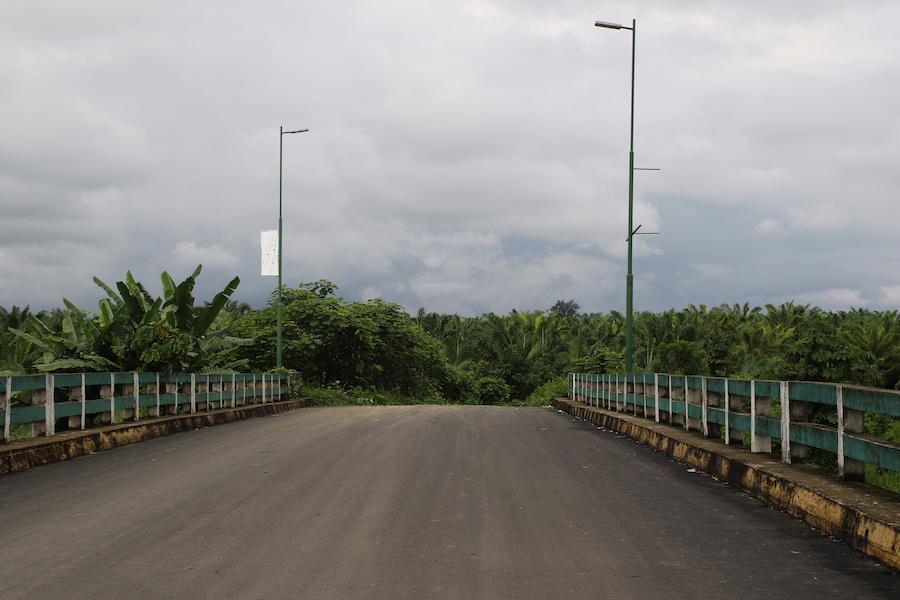 palma africana en Ecuador