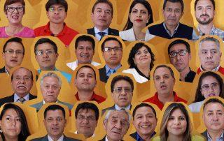 Quiénes son los candidatos al Consejo de Participación Ciudadana y Control Social 2019