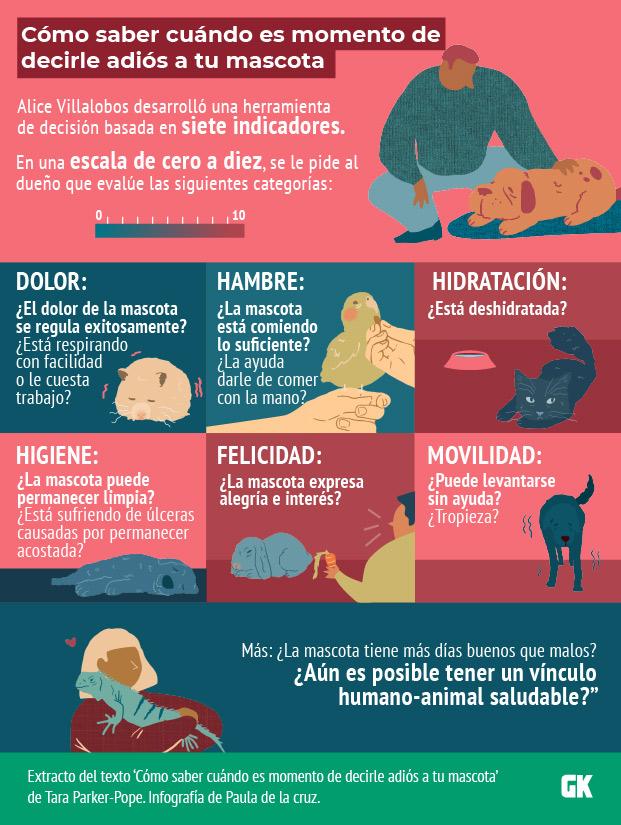 Cuándo dormir a tu mascota: Una guía ilustrada