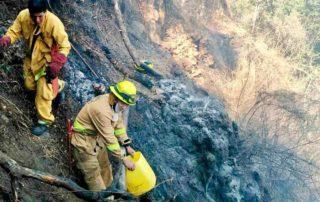 consecuencias del incendio de quilanga