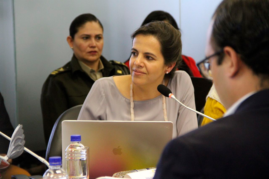 Juicio político contra María Paula Romo.