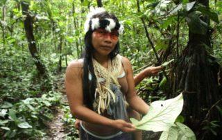 ambiente en Ecuador