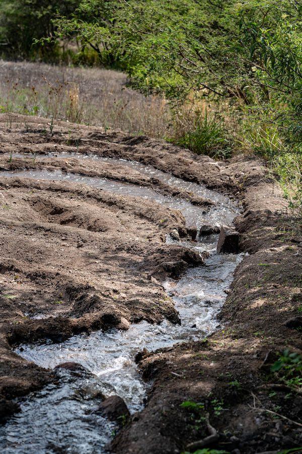 riego por inundación