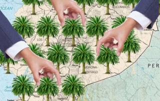 nueva ley de palma