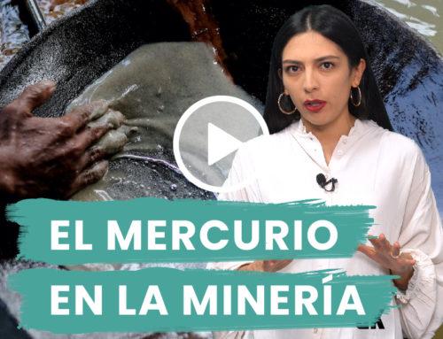 Comer o envenenarse con mercurio: el dilema de los mineros artesanales