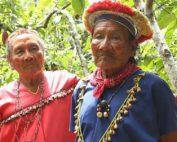 problemas ambientales en Ecuador en el 2020