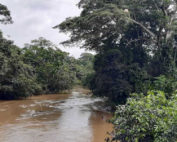derrame en el río Shiripuno